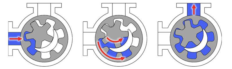 DPP Internal Gear Pump