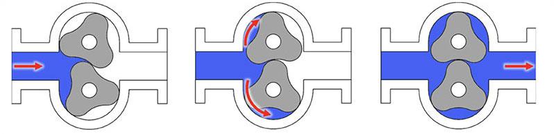 DPP Diagram of Lobe Pump